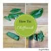 How to: Chiffonade