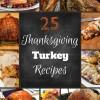 25 Thanksgiving Turkey Recipes