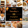 Tasty Tuesday's - 14 Pumpkin Favorites!