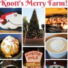14 Delicious Foods To Try, and Also Things To Do at Knott's Merry Farm!