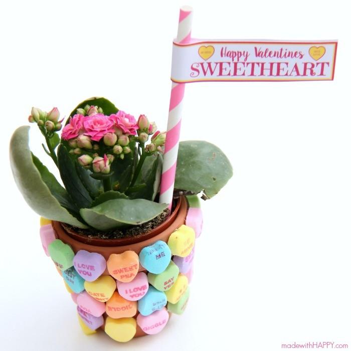 happy-valentines-sweetheart-sq-700x700