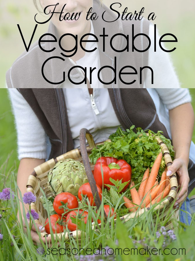 How-to-Start-a-Vegetable-Garden6