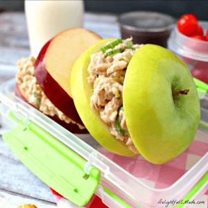 Tuna-and-Apple-Lunchbox-Sammies-by-DelightfulEMade.com-sq2-w-txt-300x300
