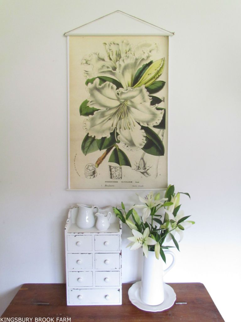 DIY HANGING BOTANICAL PRINTS